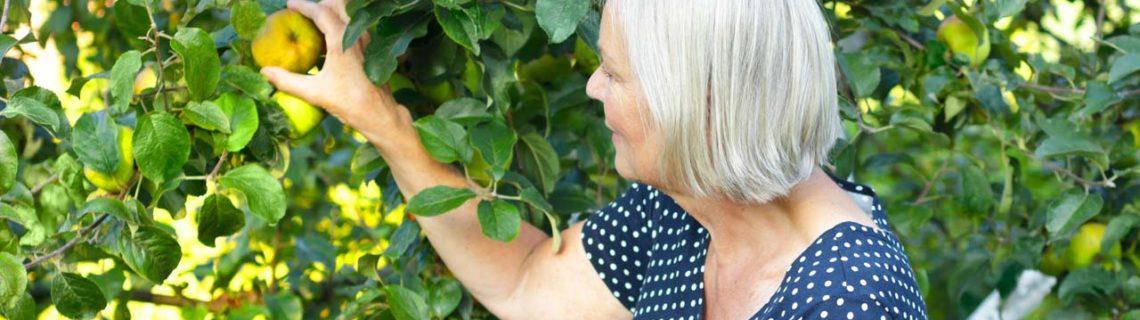 Frauengesundheit Hormonersatztherapie Frau pflückt Obst