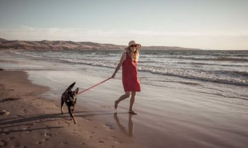 For women woman walking dog on beach