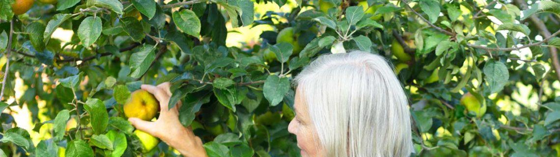 Para mujeres menopausia