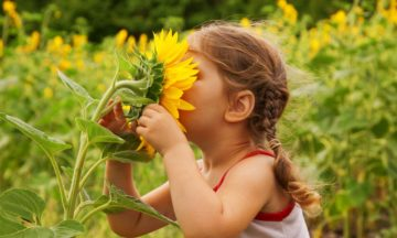 Other consultation services allergy girl smelling sunflower