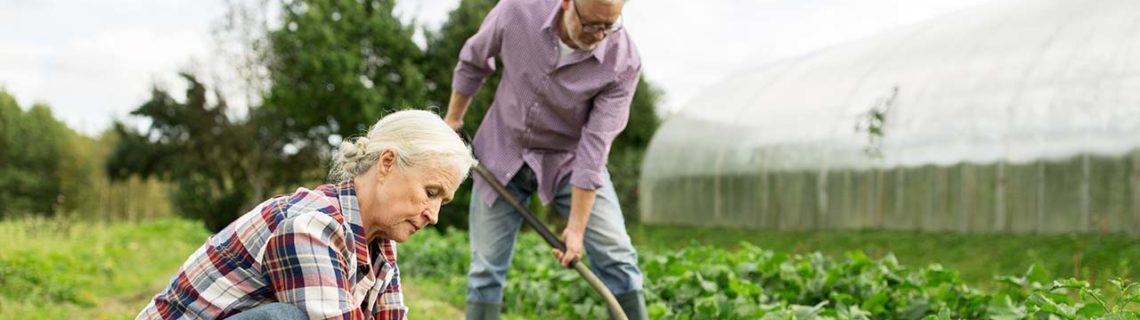 Smärta muskel-/ledvärk man och kvinna arbetar i trädgården
