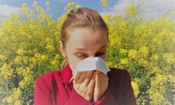 Den ultimata guiden för pollenallergi