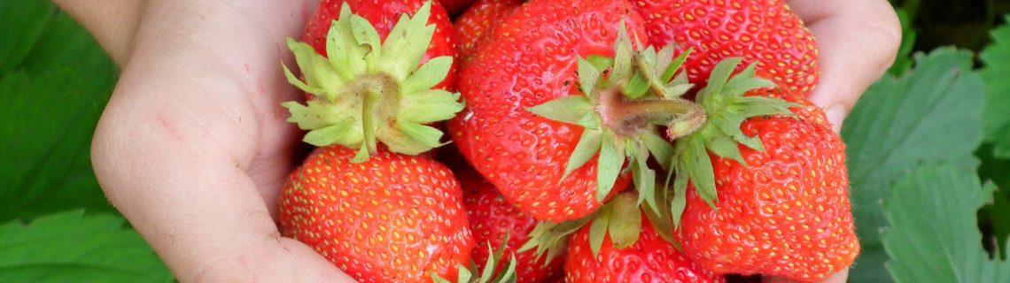 Stärk ditt immunförsvar med nyttig mat