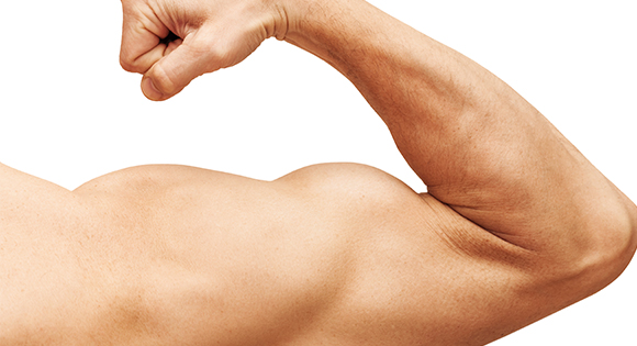 Make the Most of Your Muscles