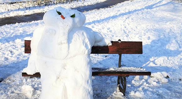 Winterkrankheiten