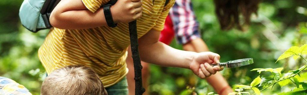 Kinderen-bos